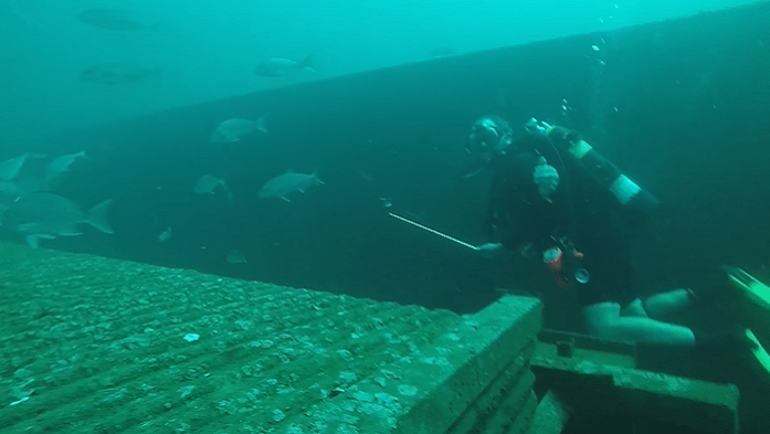 A diver swims along an artificial reef created in 2016 using retired Alabama Power boilers. Today the reef is teeming with life. (file)