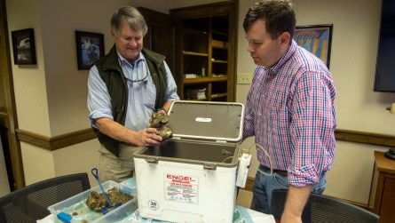 Neil Johnston, Sr. (left) and PJ Waters examine some of the oysters that will be farmed in Mobile Bay this year. (Dennis Washington / Alabama NewsCenter)