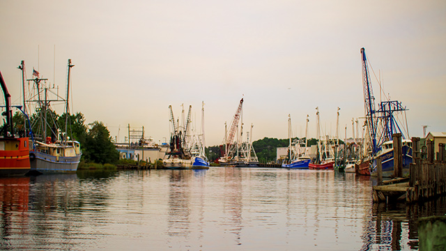 Economic relief coming for Alabama's seafood industry
