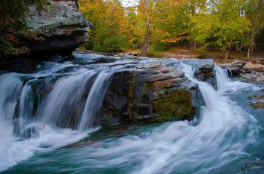 Turkey Creek Nature Preserve is full of natural beauty. (contributed)