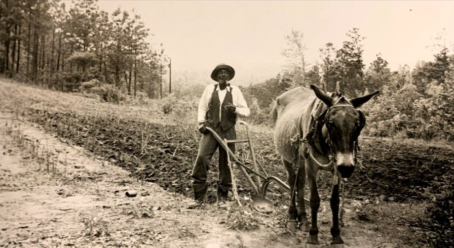 """A sharecropper in Alabama's Black Belt. The documentary """"Alabama Black Belt Blues"""" places the music in its cultural context. (contributed)"""