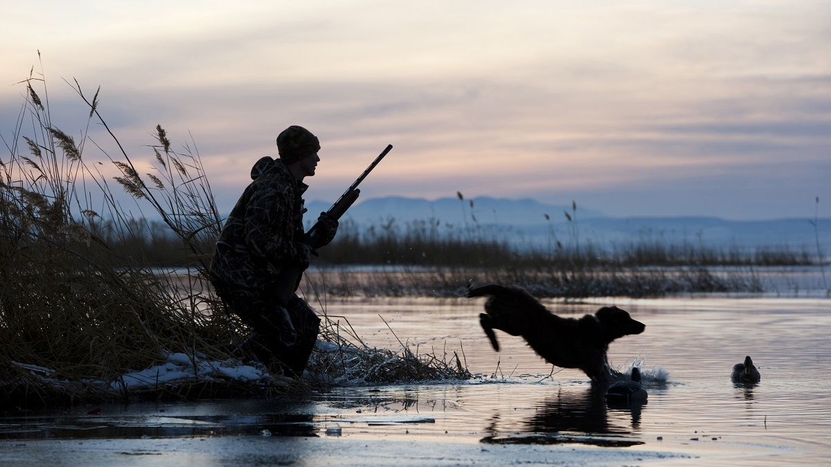 Alabama youths, veterans and military get special waterfowl hunting days