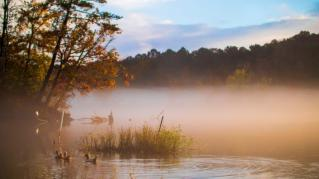 The Coosa River is a wonderful showcase of what an Alabama autumn has to offer. (Dennis Washington / Alabama NewsCenter)
