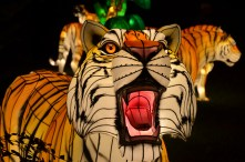Glow Wild is a new family attraction this year at the Birmingham Zoo. (contributed)