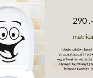 matrica-wc smile