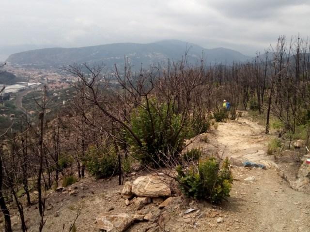 Bosque calcinado antes de llegar a Sestri
