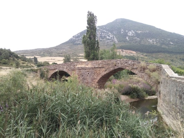 Puente muy cerca de Monreal