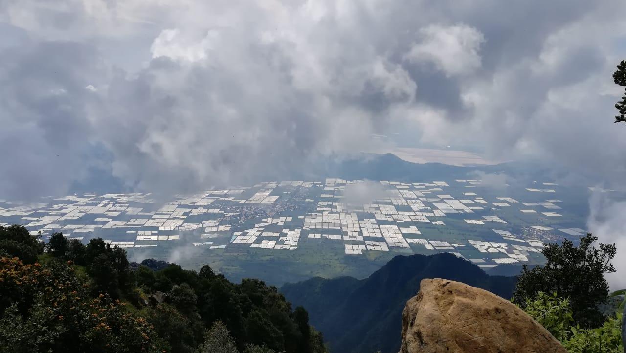 Caminata  a la quinta cumbre más grande de Jalisco: Cerro Viejo