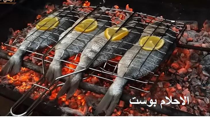 تفسير حلم السمك للحامل والعزباء والرجل وكل دلالات السمك في