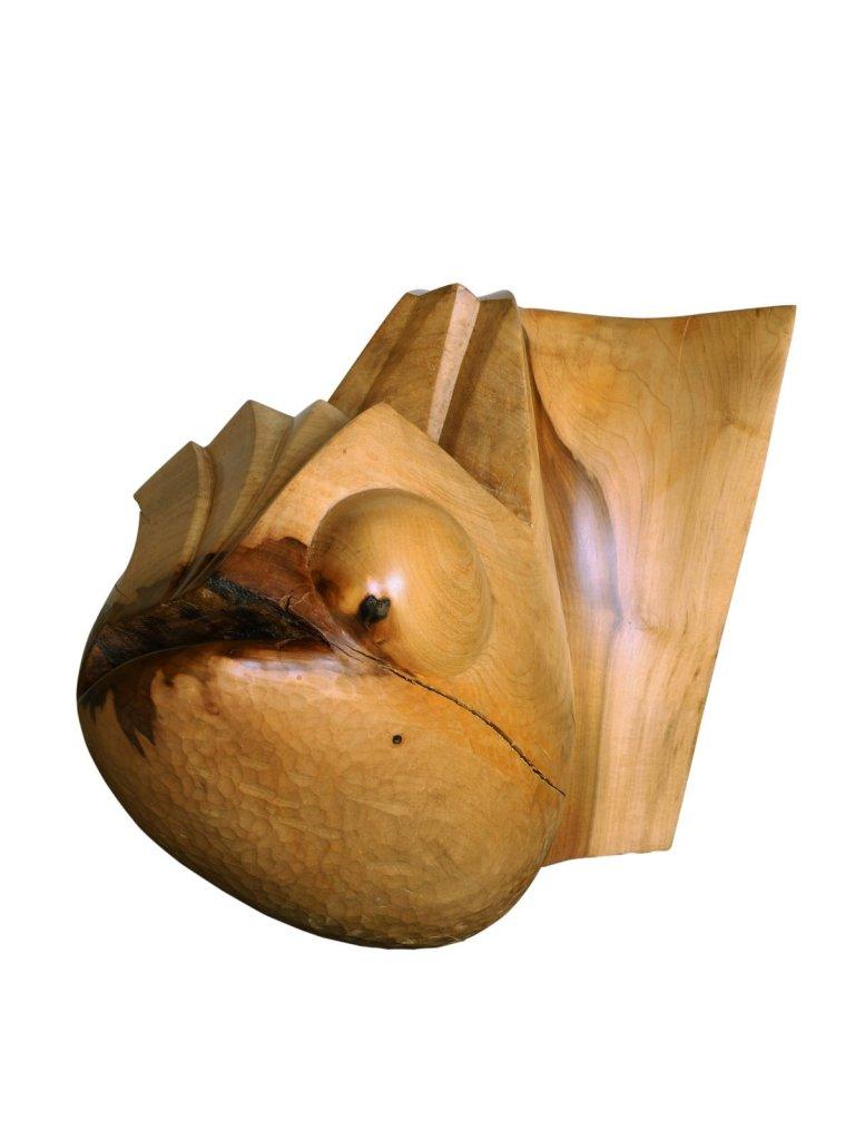 chimère, tulipier 40x28x26