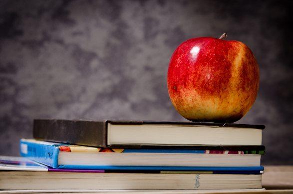 Boeken en een appel. Opleiding blijft altijd belangrijk, bijscholing moet een constante zijn