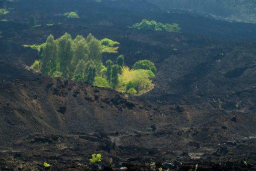 Carré vert dans un champ de lave du Mont Batur