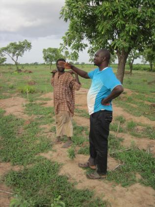 ATMA Farm - plot Alain with farmer
