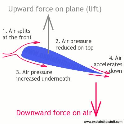 مقطع عرضي لجناح الطائرة