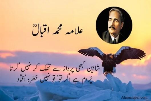 allama iqbal shaheen poetry