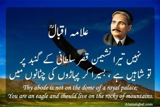 shayari of iqbal about education