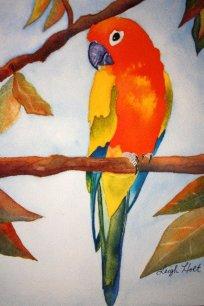 Holt-parrot-640