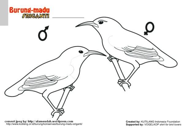 20 Batu Black White Clip Art Ideas And Designs