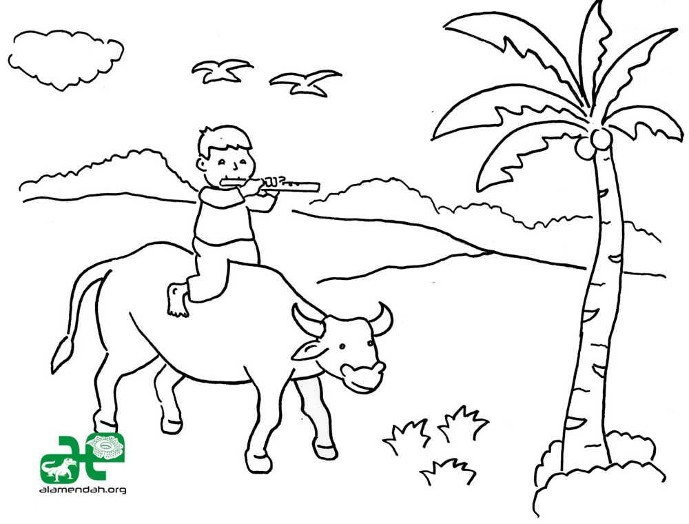 Sketsa Bunga Hitam Putih  Holidays OO