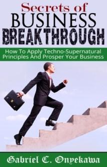 Secrets Of Business Breakthrough