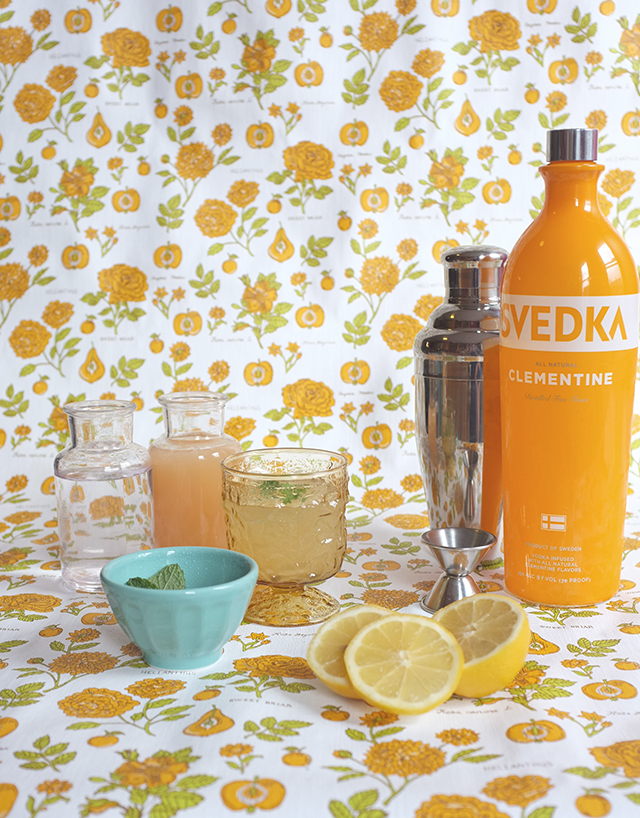 Svedka Cocktail2