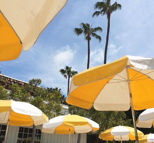 sd umbrellas