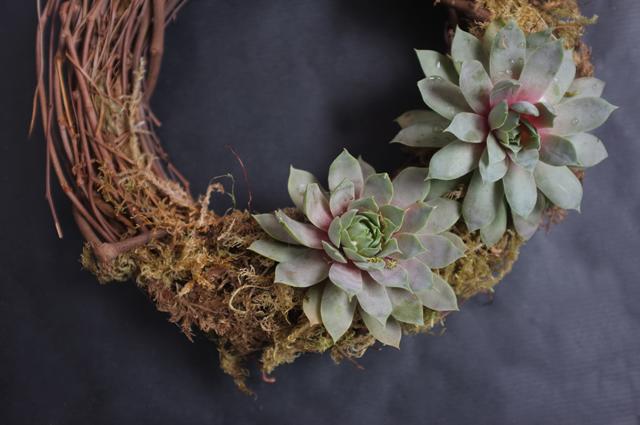 Succulent Wreath_medium