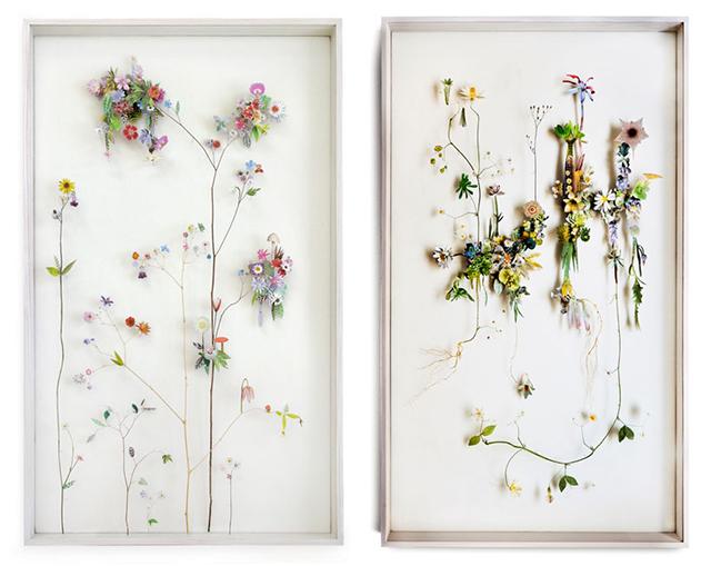 anne-ten-donkelaar-4-flower-constructions