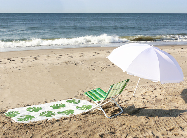 Philodendron BeachBlanket