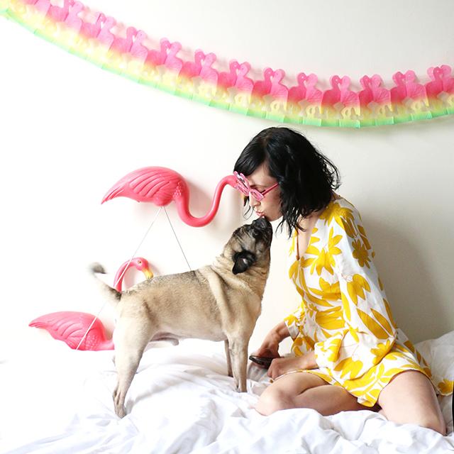 Pug Kisses