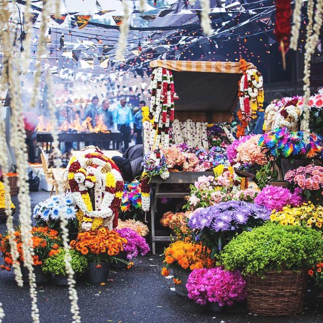 Arabian Night Florals