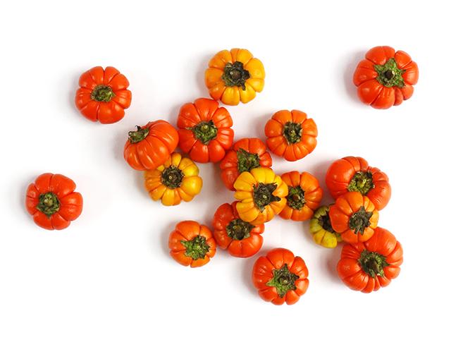 Tomato Pumpkins
