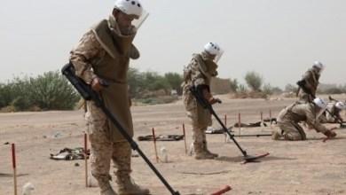 Photo of مسام يكشف إحصائية مرعبة بالألغام التي نزعها في اليمن
