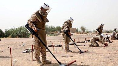 """Photo of """"مسام"""" ينتزع أكثر من 72 الف لغم في اليمن وسيناتور أمريكي يدعو لتقديم الدعم لنزع ألغام الحوثيين"""