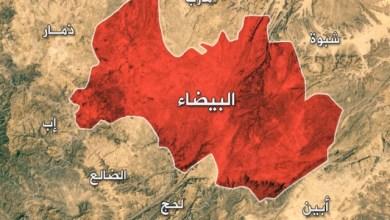 Photo of معركة البيضاء : عدوان «حوثي» وثأر تاريخي «هاشمي» .. تقرير