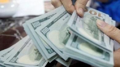 Photo of استقرار سعر الدولار واليورو .. اسعار صرف العملات مقابل الريال اليمني اليوم السبت