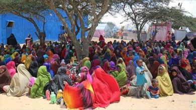 Photo of الأمم المتحدة: إجلاء 114 لاجئا صوماليا من اليمن إلى بلادهم