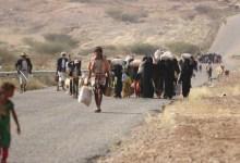 Photo of الهجرة الدولية: أكثر من 360 ألف يمني نزحوا خلال العام الجاري
