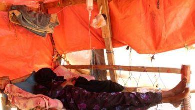 Photo of رويترز: حمى الضنك تجد أرضاً خصبة للإنتشار في اليمن مع استمرار الحرب