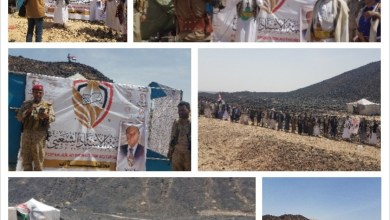 Photo of قبائل إب تحتفل بعيد الفطر المبارك وذكرى تحقيق الوحدة  في مطارح المحافظة بمأرب