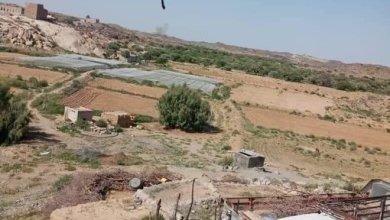 Photo of آخر التطورات الميدانية بين مليشيات الحوثي وقبائل آل عواض في البيضاء