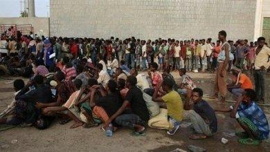 Photo of الهجرة الدولية: أكثر من 1000 مهاجراً أفريقياً دخلوا اليمن خلال الشهر الماضي