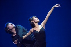 International Dance Festival, 2015