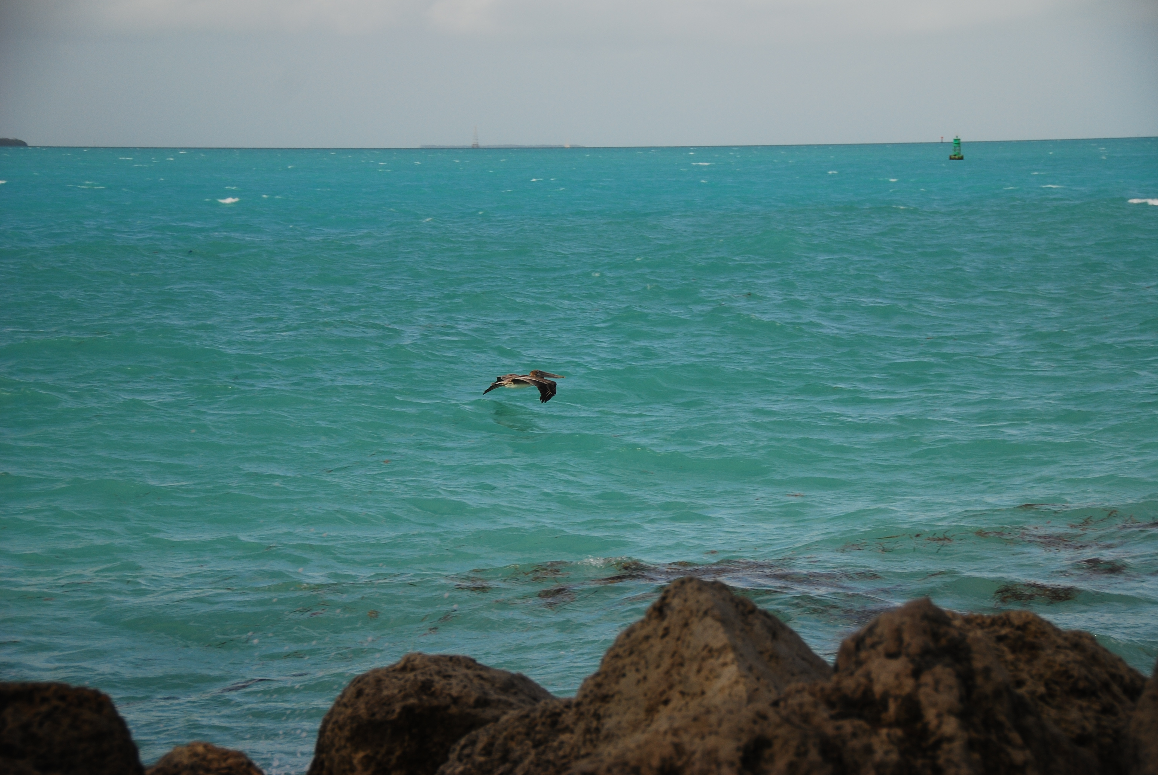 View From Fort Zachary Taylor