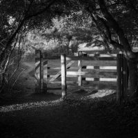 Kissing gate - a different journey perhaps?