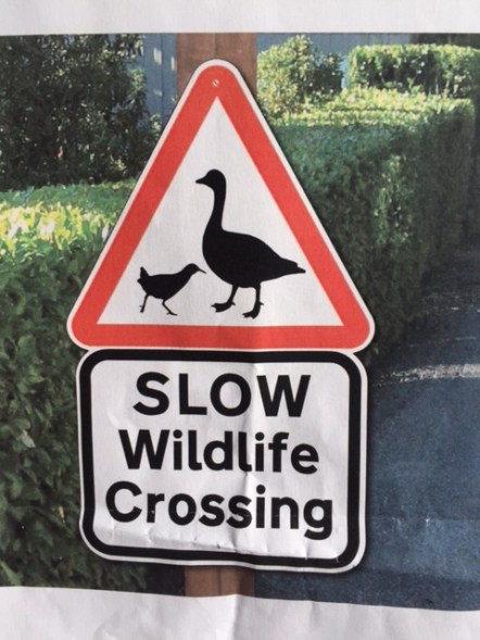 Geese Crossing road warning sign tfl
