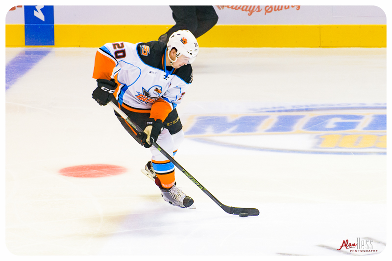 San Diego Gulls vs Grand Rapids Griffins at the Valley View Casino Center on 10/10/2015