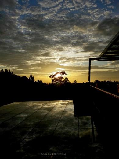 Enjoying Sunrise