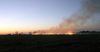 320px-BurningOffFieldsInTheEveningInSouthGeorgia[1]