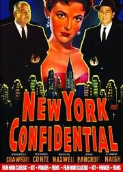 DVD cover art for film noir movie New York Confidential